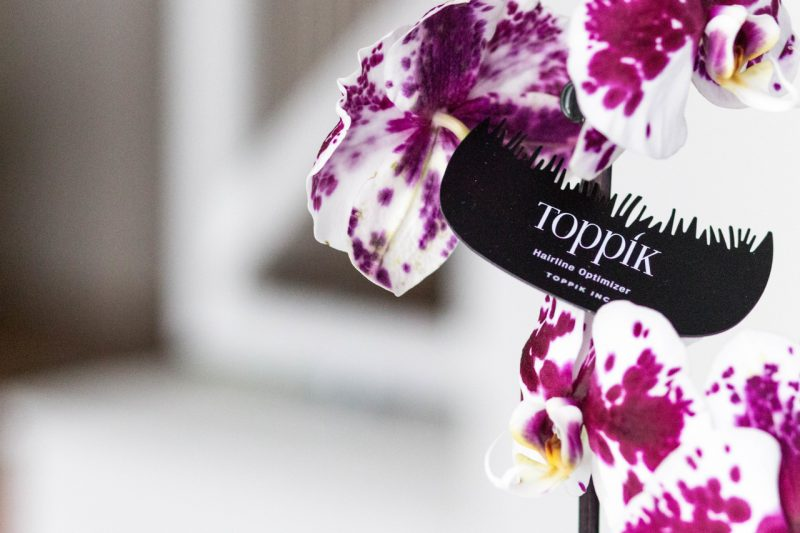 toppik_romania_accesorii